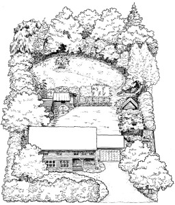 Drawing of holistic garden by Barb Allen