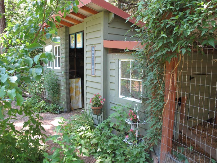 Potting Shed/Chicken Coop