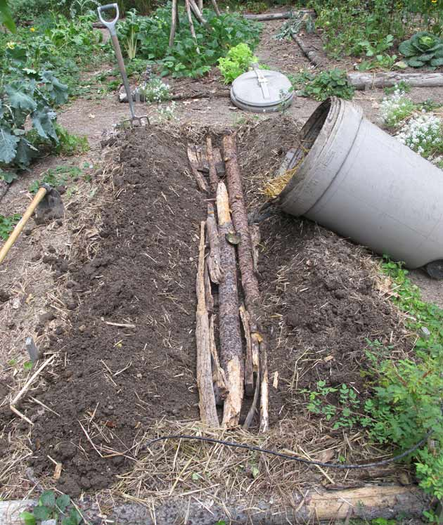 Bed with old logs and rotting oak in a trench