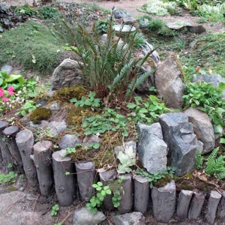 Rain Garden - madrone retaining wall