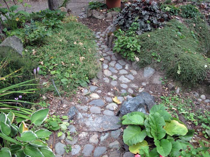 Inflow into the Rain Garden