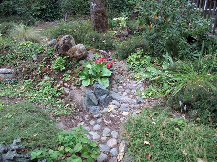 Rain Garden Over-flow