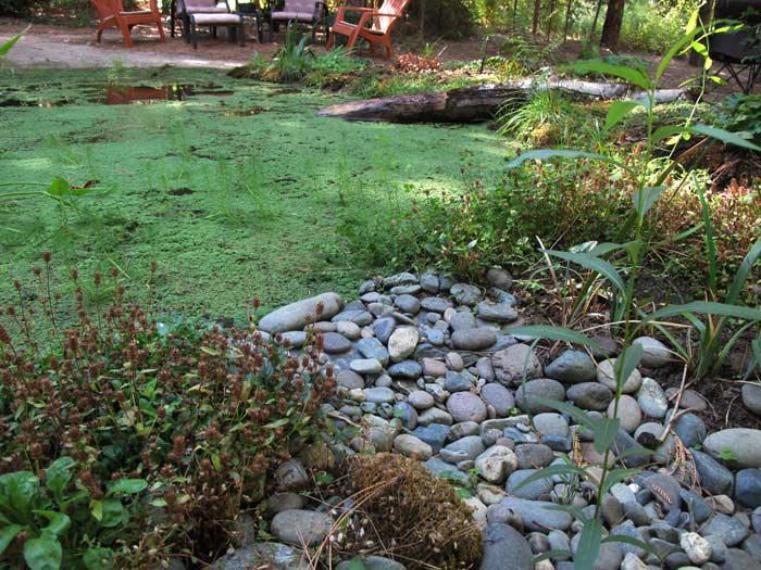 Pond overflow